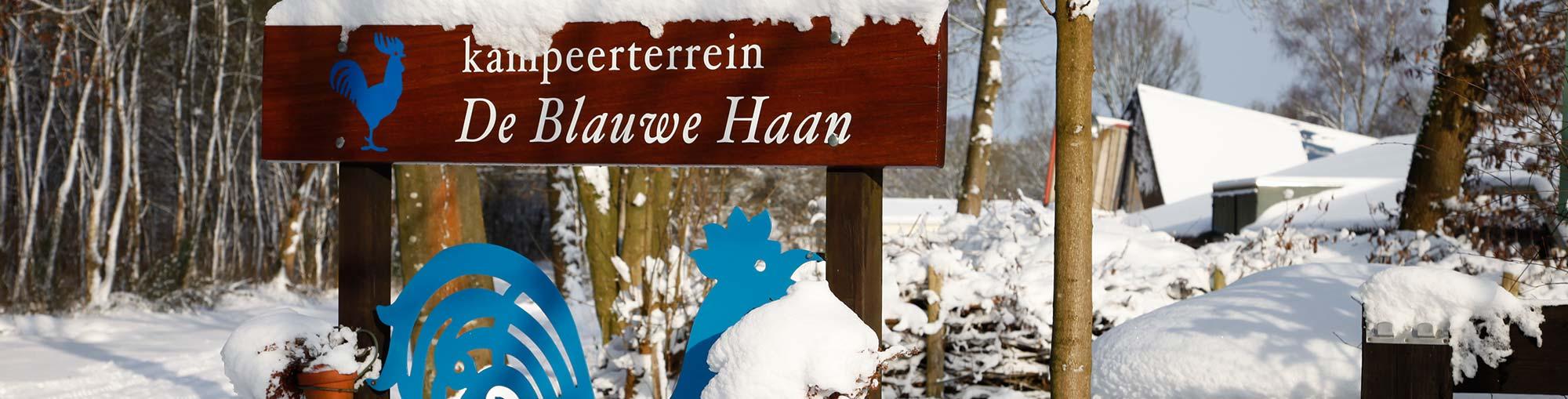 winterkamperen-drenthe-blauwe-haan-01